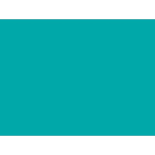 Wilton Icing Color - Teal - 28g